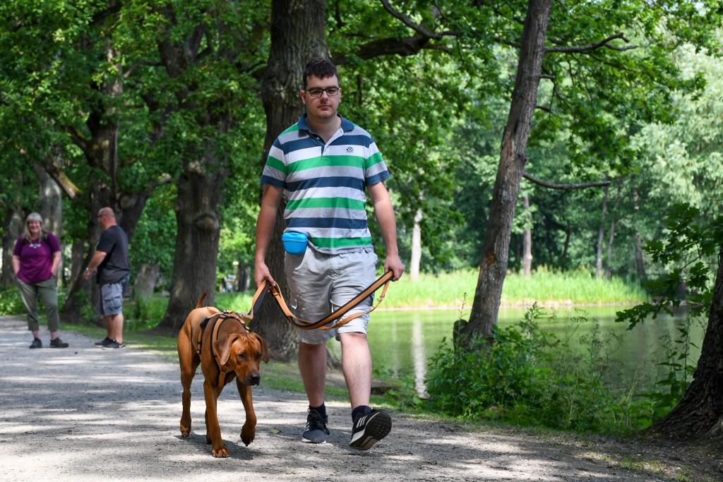 Voll konzentriert- Herrchen und Hund beim Leinentrianing